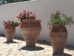 Terrace Pots